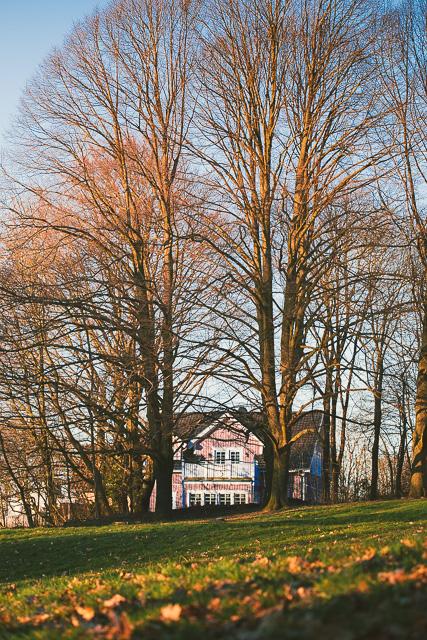 Das rosa Haus im Herbst